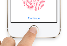 Fingerprint Reading