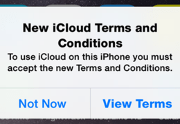 Get me out of iCloud T&C Hell!