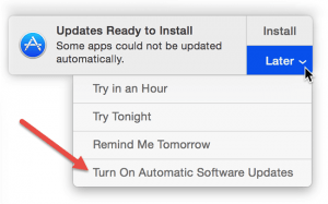 Screenshot showing how to turn on automatic updates in OS X, image from apple.com