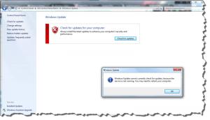 Screenshot of Windows Update Error that the service isn't running