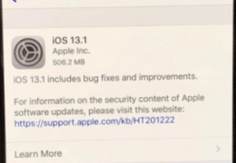 iOS 13.1.1 or iPhone 11?