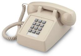 Telephone Service 2021