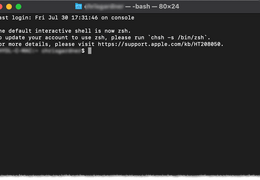 Terminal App in Mac and Dock-Explained