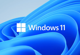 Windows 11 now or later?